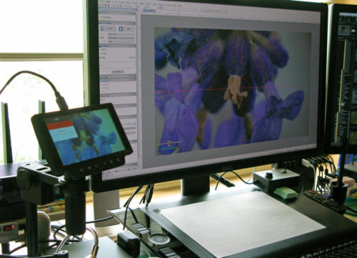 HY-1070 Microscope Camera + 制御ソフトウェア